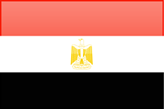 EGYPTIAN BELGIAN COFOR INDUSTRIAL INVESTMENT EGY