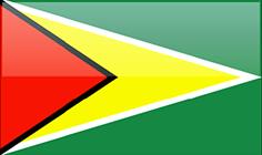 AMAZON CARIBBEAN GUYANA LTD