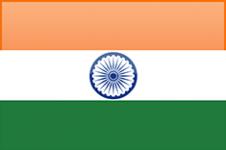 APIS INDIA LIMITED