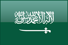 SAUDI EXPORT DEVELOPMENT AUTHORITY
