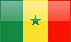 AAFEX (ASSOCIAITON AFRIQUE AGRO EXPORT)