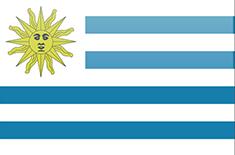 GRUPO DISCO URUGUAY S A